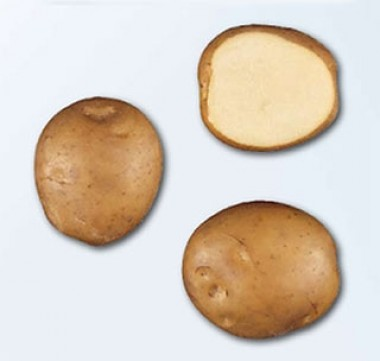 Картофель Jaerla смотреть