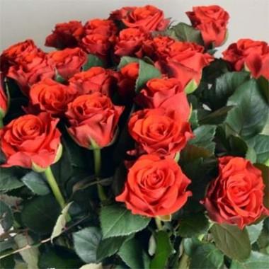 Розы Декоплант