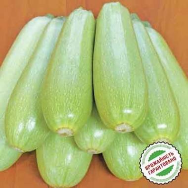 Семена кабачков