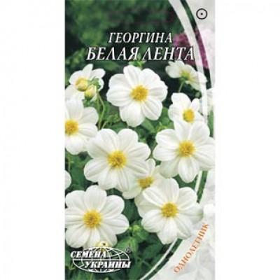 Георгина Белая лента фото