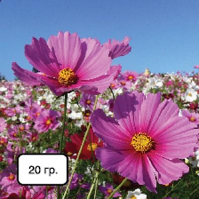 NPK + микроэлементы (для цветов и комнатных растений) фото