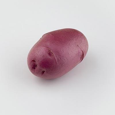 Картофель Фламенко фото