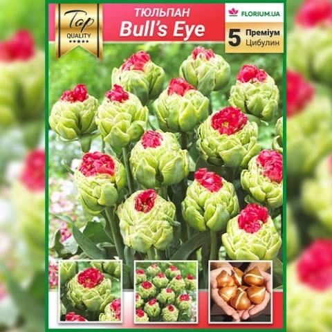 Тюльпаны Bull's Eye (Премиум Луковицы) фото