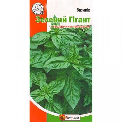 Базилик Зеленый Гигант фото