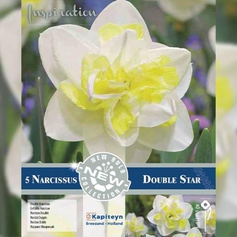 Нарцисс Double Star (Брендовые луковицы KAPITEYN®) фото