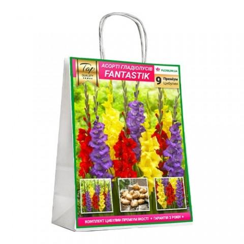 Премиум гладиолусы Fantastik (брендовая упаковка) фото