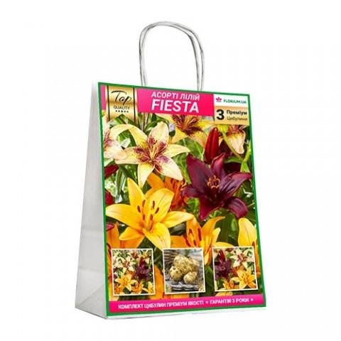 Премиум лилии Fiesta (брендовая упаковка) фото