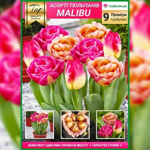 Премиум Микс Малибу (брендовый пакет) фото