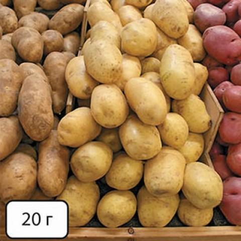 Премиум-Фолиар (для картофеля + прилипатель) фото