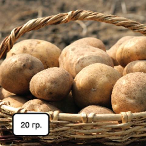 NPK + микроэлементы (для картофеля) фото