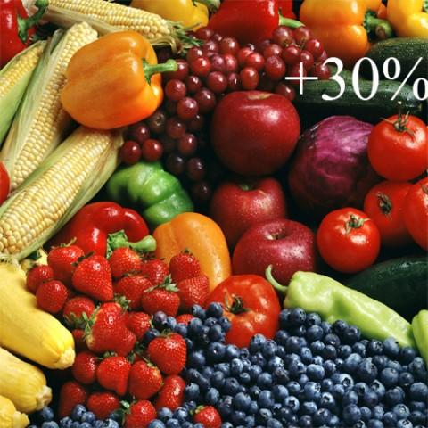 Террафлекс-Финал (для увеличения урожая) фото