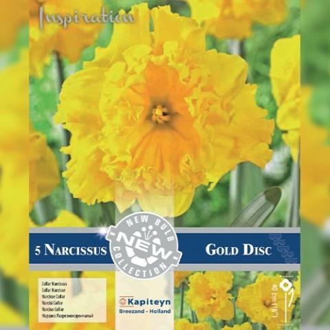 Нарцисс Gold Disc (Брендовые луковицы KAPITEYN®) фото