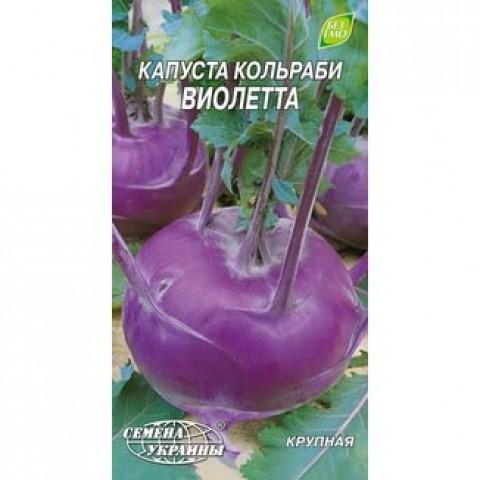 Капуста кольраби Виолетта фото