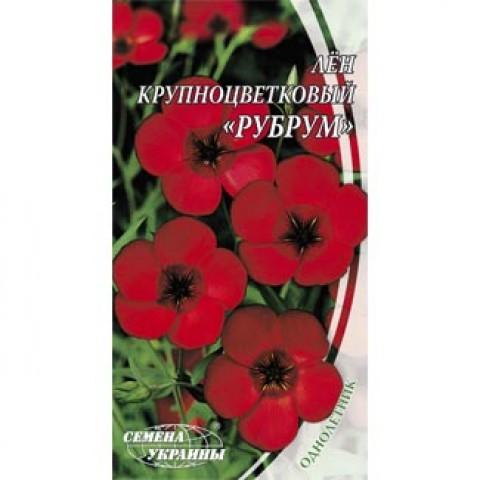 Лён крупноцветковый Рубрум фото