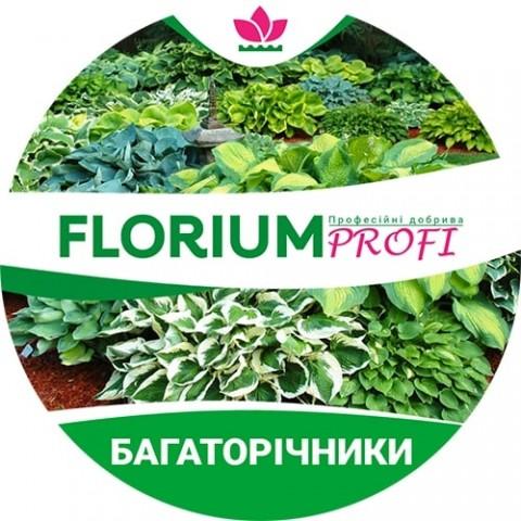 Удобрение для многолетников (Florium Profi универсальное) 4м. 500г фото