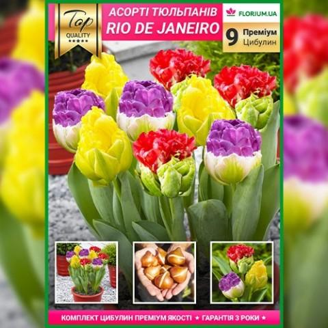 Премиум Микс Рио де Жанейро (брендовый пакет) фото