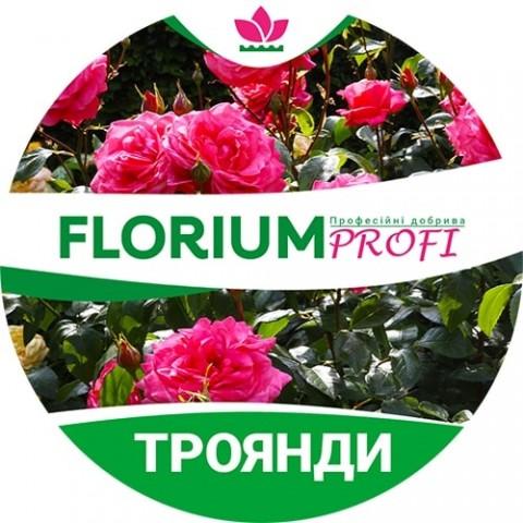Удобрение для роз (Florium Profi универсальное) 4м. 500г фото