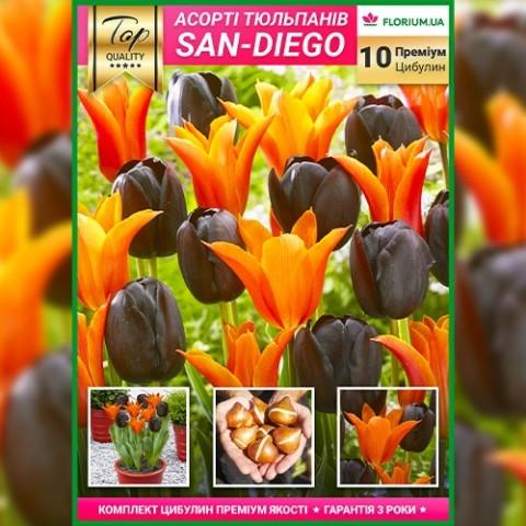 Премиум Микс Сан-Диего (брендовый пакет) фото