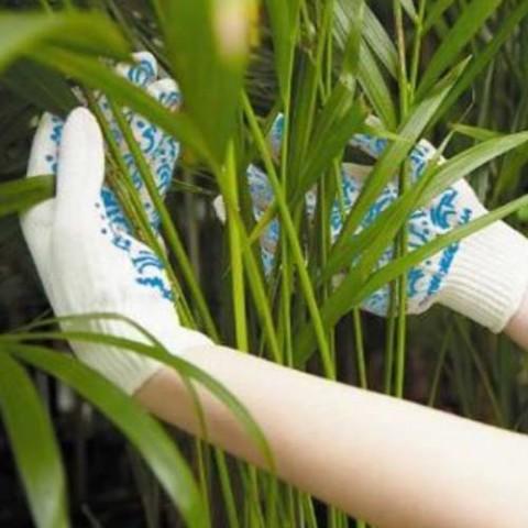 Рукавицы трикотажные для защиты от механических воздействий с нанесением ПВХ (женские) фото