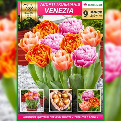 Премиум Микс Венеция (брендовый пакет) фото