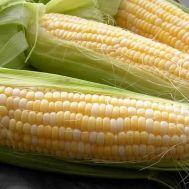 Кукуруза Деликатесная фото