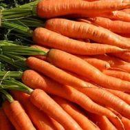 Морковь Кораль фото