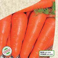 Морковь Курода фото