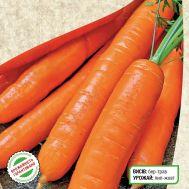 Морковь Натофи фото