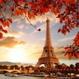 Тур Королевские сады и парки Европы во Францию (Версаль) с командой Florium фото