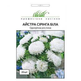 Астра Сиринга Белая фото