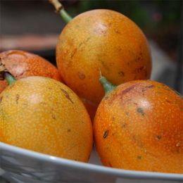 Гренадилла фото
