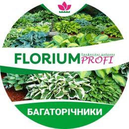 Удобрение для многолетников (Florium Profi универсальное) 4м. 250г фото