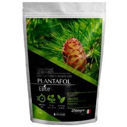 Комплексное минеральное удобрение для хвойных и вечнозеленых, Plantafol Elite (Плантафол Элит), 100г, NPK 20.20.20, Весна-Лето фото