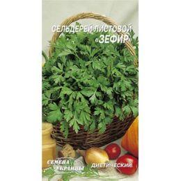 Сельдерей листовой Зефир фото