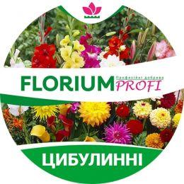 Удобрение для луковичных цветов (Florium Profi универсальное) 4м. 250г фото