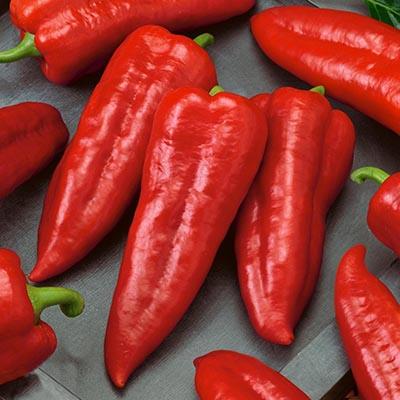 Овочі для консервування, Перець Мерцедес  - купить со скидкой