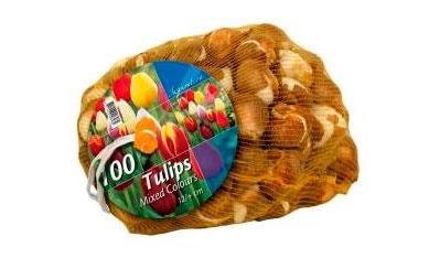 Большие упаковки луковиц