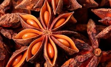 Семена лекарственных растений