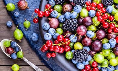 Саджанці плодових кущів