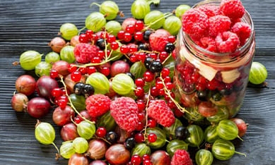 Саджанці плодових купити