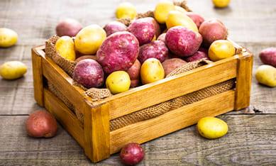 Картофель семена и клубни