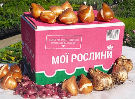 Пример упаковки Florium.ua