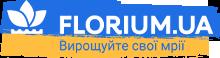Интернет магазин Флориум